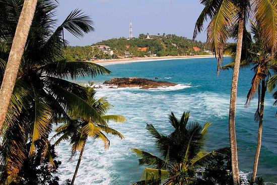 Excursion privée de 8jours au Sri...