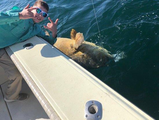 Goliath grouper!