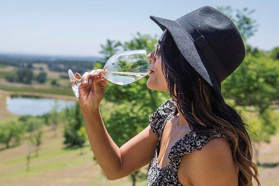 Tour panoramico della Hunter Valley Winery con cantine boutique e