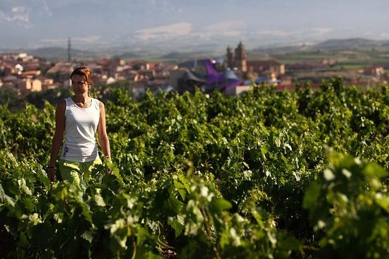 Rioja Private Tour: Medieval Villages, Outdoor Activities, Wine...