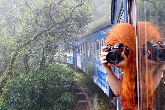 Train Tour to Ilha do Mel