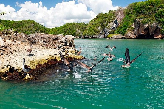 Los Haitises Plus Bacardi Island for...