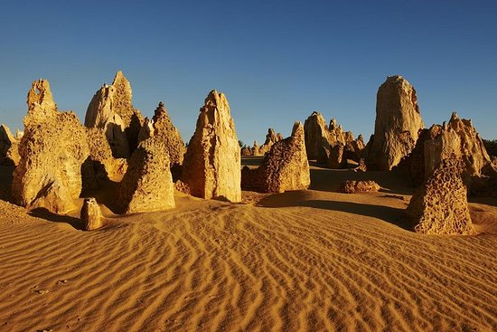 Pinnacles Day Trip from Perth Including...