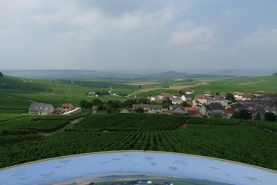 Day-trip for small groups in Champagne...