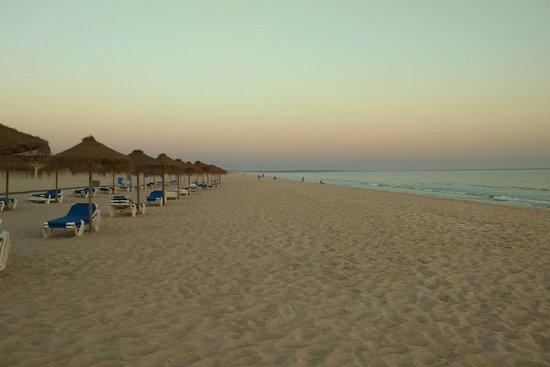 Tour privado a la costa del Alentejo, la playa de Comporta, Alcacer...