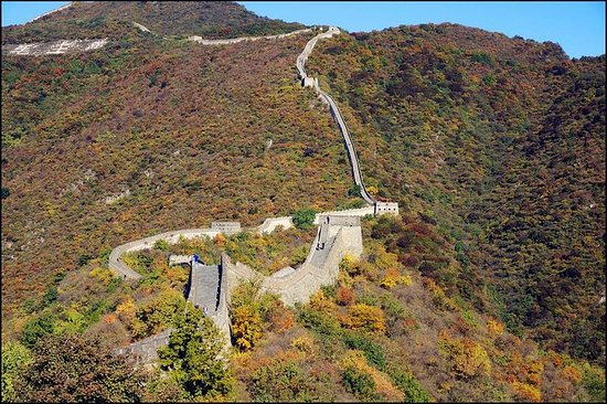 Private Changyu Chateau Wine Tasting Tour and Mutianyu Great Wall Visit Photo