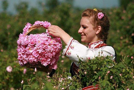 Rosens dal og Koprivshtitsa