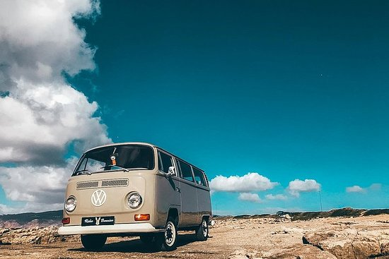 Full-Day Small Group Classic VW Bus ...