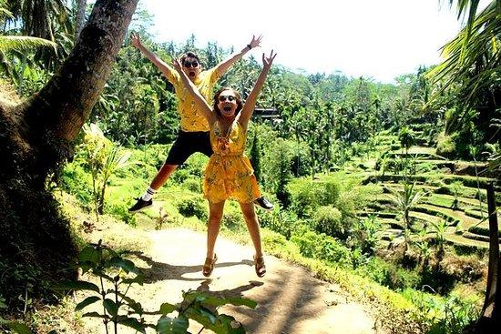 Ubud: visite spectaculaire des cascades...