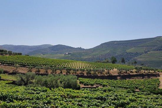 Excursão por Vale do Douro e visita a...