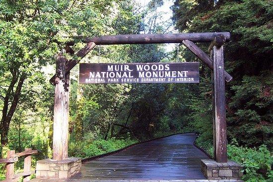Muir Woods-tur med 1 times Golden Gate...