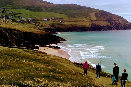 Dingle Peninsula Tour from Dingle with wifi on board