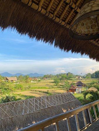 Campuhan Ridge Walk Ubud 2019 All You Need to Know