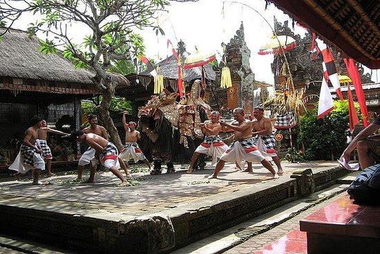 Tour dell'arte e della natura di Bali