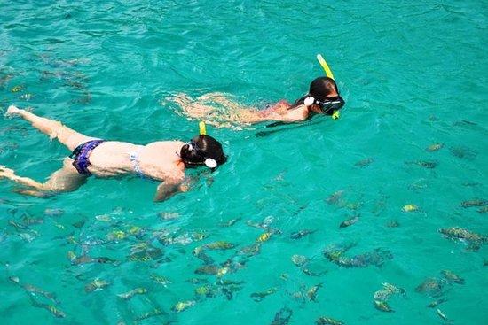 Schoener boot met snorkelen