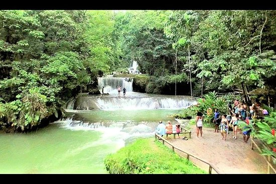 YS Falls plus Black River Safari from Negril