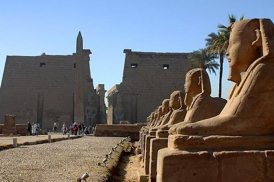 Luxor Private Guided Day Tour fra Kairo...
