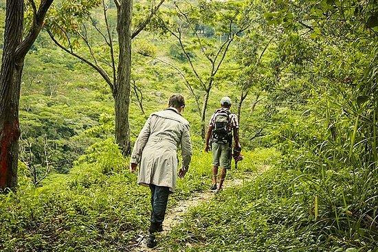 Heeloya Village Trek de Kandy
