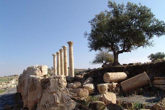 Visita guidata privata di Umm Quais e Jerash con pranzo
