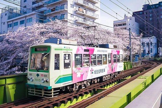 Tokyo cachée: le long de la ligne de tramway nostalgique