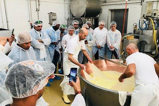 Esperienza gastronomica a Bologna: visita alle fabbriche con pranzo