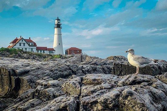 Visite du phare d'hiver et du front...