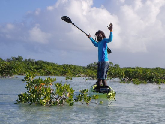 Kayak Eco Tour: Ricco in the mangroves.