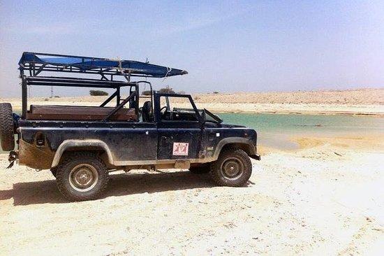 Desert Safari og Dead Sea Day Trip...