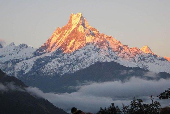 Mardi Himal Trek 6 jours