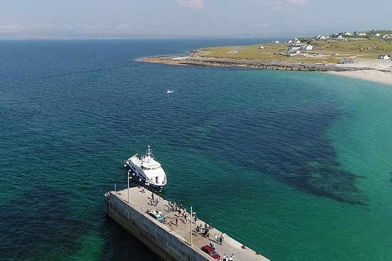 Day Trip from Limerick & Clare to Cliffs of Moher plus cruise...