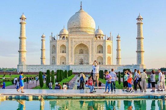 Visite privée du fort Taj Mahal et...
