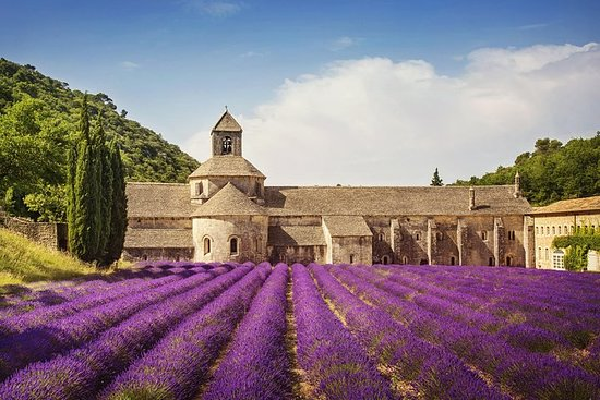 6-Day Provence, Burgundy and the Ardèche Small-Group Tour from Paris...