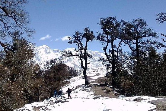 Brahmatal trek (campo base di Roopkund)
