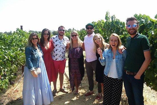 Visite en petit groupe de la région viticole au départ de San...