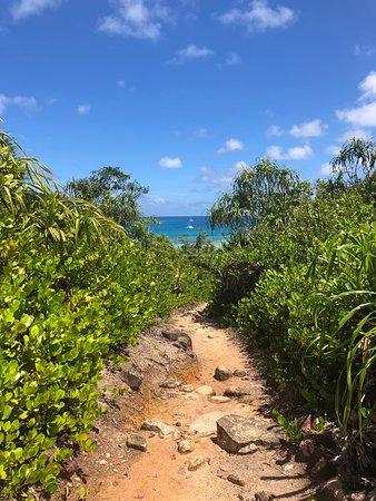 Curieuse Island, Sejšeli: Giant tortoises, baby tortoises, a lovely walk across the island to the former leper colony