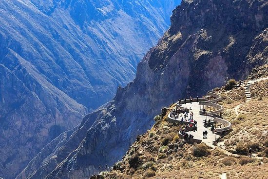 Colca canyon full day + buffet lunch