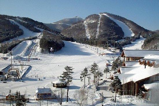 Il meglio del tour sciistico (Jisan Resort)