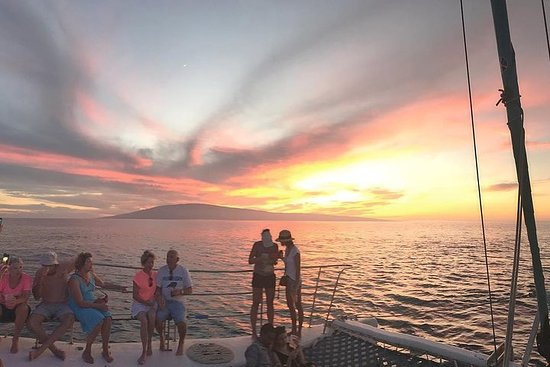 Sunset Whale Watching with Open Bar...