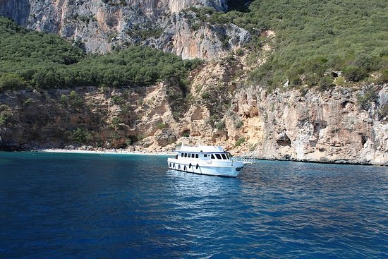 Cagliari: Full-Day Mini Cruise i Gulf...