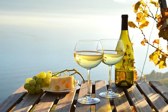 The Hamptons and Long Island Wineries Private Tour