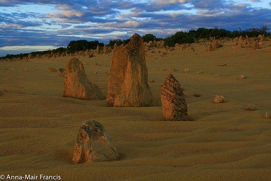 The Pinnacles, Sea and Dunescapes, Bush...