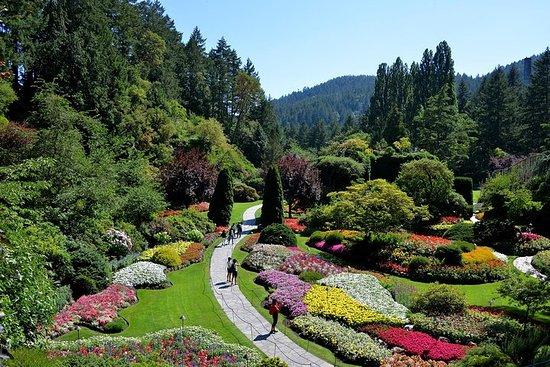 Vancouver til Victoria og Butchart Gardens Tour