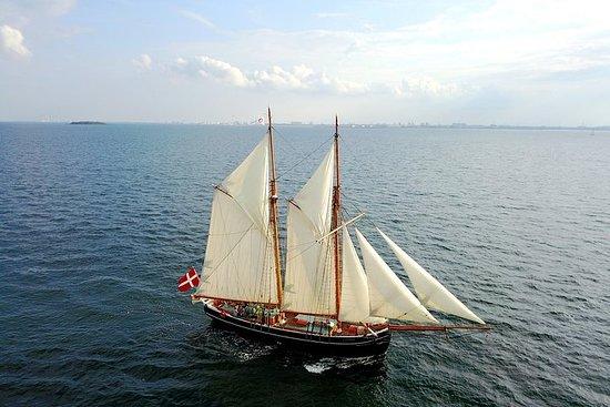 コペンハーゲン港からのセーリングクルーズ-クルーと一緒に帆走