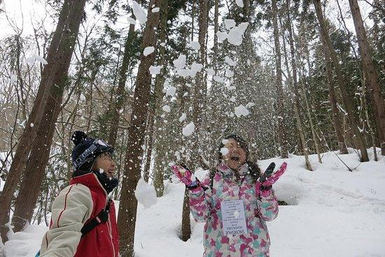 [5 minutter fra Minakami Inter] Snøvandring halvdagstur som familien...