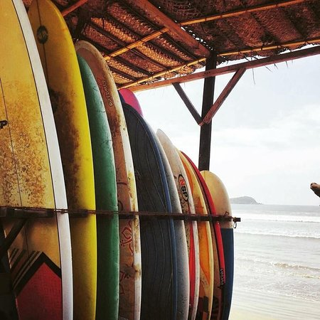 We are connected with a surf school where you can rent boards or take lessons.