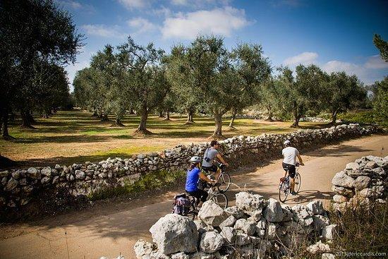 Radtour über Salento: Capo di Leuca...
