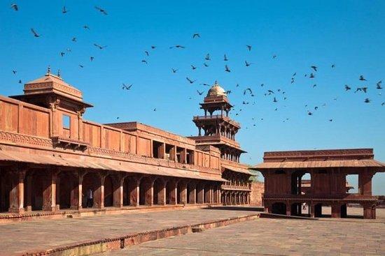 Tour privé d'une journée au Taj Mahal...