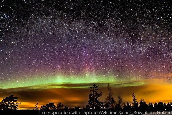 Private Aurora Tour (5 or more) by Aurora Experts- Ivalo-Saariselka