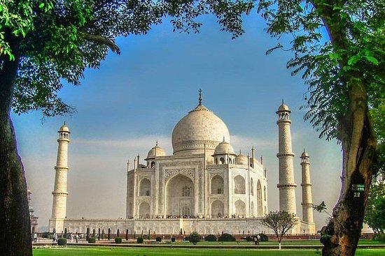 从德里乘私人汽车出发的12小时泰姬陵日出泰姬陵之旅