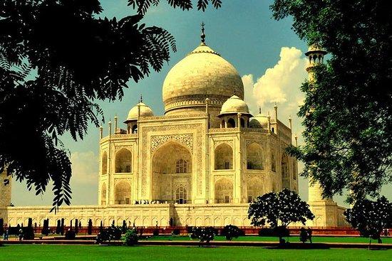 Visite du même jour du Taj Mahal en...